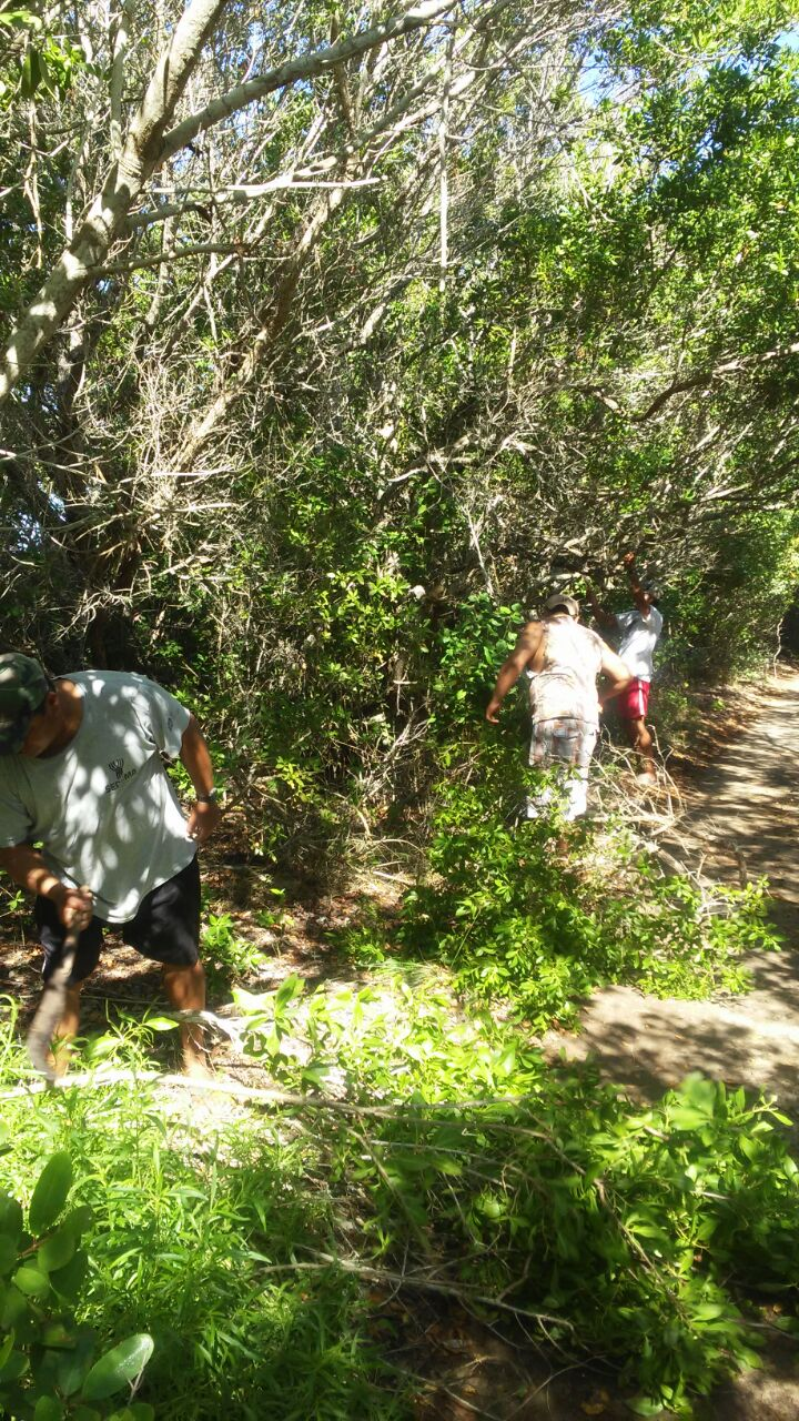 Apoyo para el mantenimiento ambiental de la unidad de manejo para la conservación de la vida silvestre Reserva Estatal el Palmar, 3